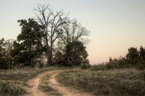 Lonesome Road HDR by joelht74