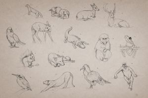 Animal Gestures 2 by giselleukardi