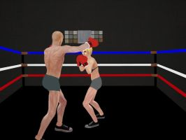 Intergender Boxing 04 by andypedro