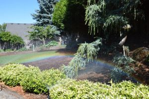 Small rainbow in garden by A1Z2E3R