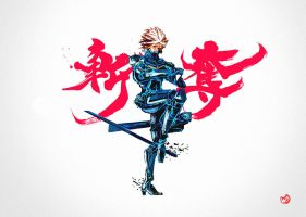 raiden rising by mulodesu