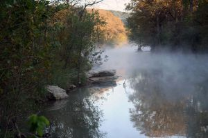 Misty River Morning by LeeAnneKortus