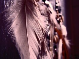 feathers. by illperii