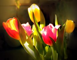 spring in the kitchen by creapicform