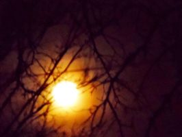 Under the yellow moon by TheGerm84