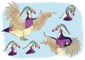 Duck Character Sheet by hannahv92