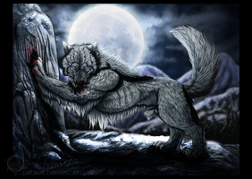 Remake: in the night-Silberfang by Dalkur