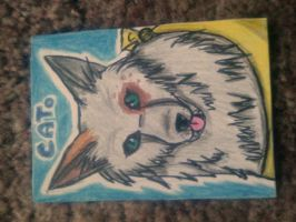 .::ACEO Trade with NativeTheFoxWolf::. by Snowstorm-wolf