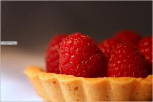 Raspberry Tart . . . by Sha59-Ananii