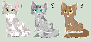Kitty Adopts by Allizia