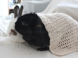 Crochet Rabbit Blanket by bicyclegasoline