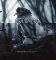 Red eyes pigeon ( close up) by ZedLord-Art
