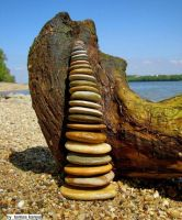 Driftwood and stone in hungary by tamas kanya by tom-tom1969