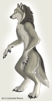 Werewolf Standing -- Male by sugarpoultry