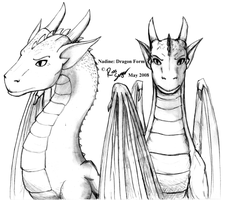 Dragoness Pencil Drawing by Ross-Sanger