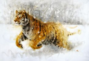 tiger in wash and strokes by alrasyid