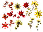 Lilies PNG Stock by Roys-Art