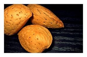 Almonds by photonFUEL