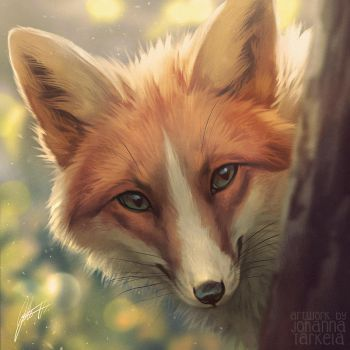 Spring Fox + VIDEO by Lhuin