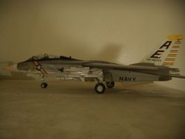 Tomcat F-14A  built complete by Kwokheichan