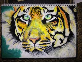 Tiger by LondonAssyrian