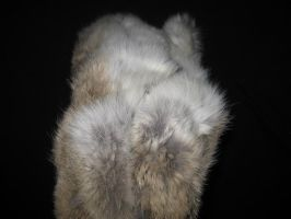 Rabbit Fur 15 by TRANS4MATICA