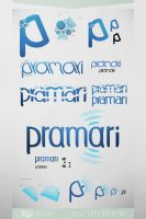 Pramari Logotypes by inde-blokcrew