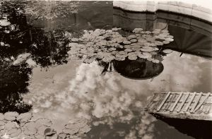 Clouds and lily pads by Nichisbadass