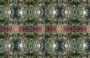 Extended Symmetrical Stereo Box Grove Experience by aegiandyad