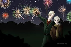 APH - DenNor - Happy New Year by Harvinainen-Miyu
