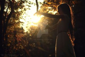 I Capture the Sun by BCMPhotography