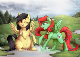 CM - after rain by mr-tiaa