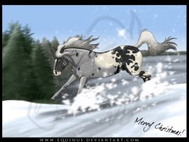 Winter Games by Equinus