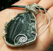 Double-Trilobite Fossil and Silver Pendant by HeatherJordanJewelry