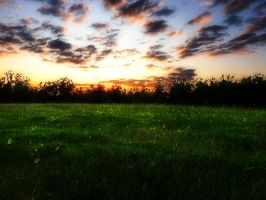 Fantasy Field Background by little-spacey