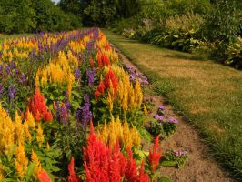 Nature's Palette by sweeneykitkat