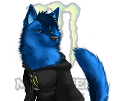 'Blue' OC wolf Request -coloured by Shiro-Marusu