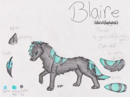 Blaire Reference Sheet by LeoSayaka