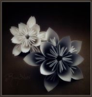 Kusudama and Cherry Blossom by RainSilver