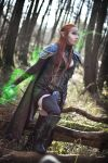 The Elder Scrolls Online elven cosplay by emilyrosa