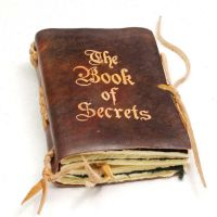 Secrets book by gildbookbinders