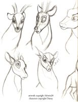 Sketchbook-Disney Deer v3 by Ashwin24