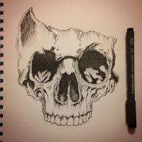 Skull Pen Ink Drawing by madelinemaligro