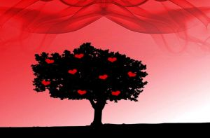 Love grows on trees by MindStep