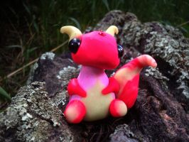 Raspberry. The Baby Dragon by SteamPixy