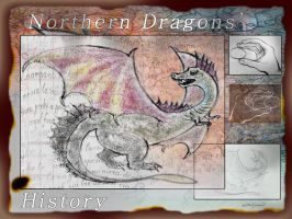 Northern Dragons' History by altergromit
