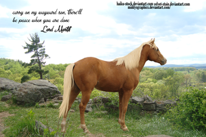 LORD MORTIF [REQUEST] by MiddysGraphics
