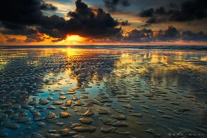 Vitamin Sea by Oer-Wout