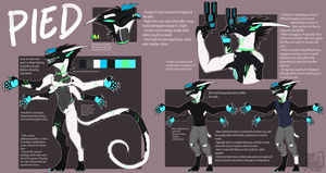 Pied Reference Sheet by fullmetalshadowwolf
