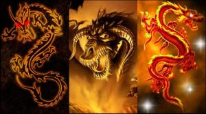 Fire Dragon walpaper for s5230 by Teodora45